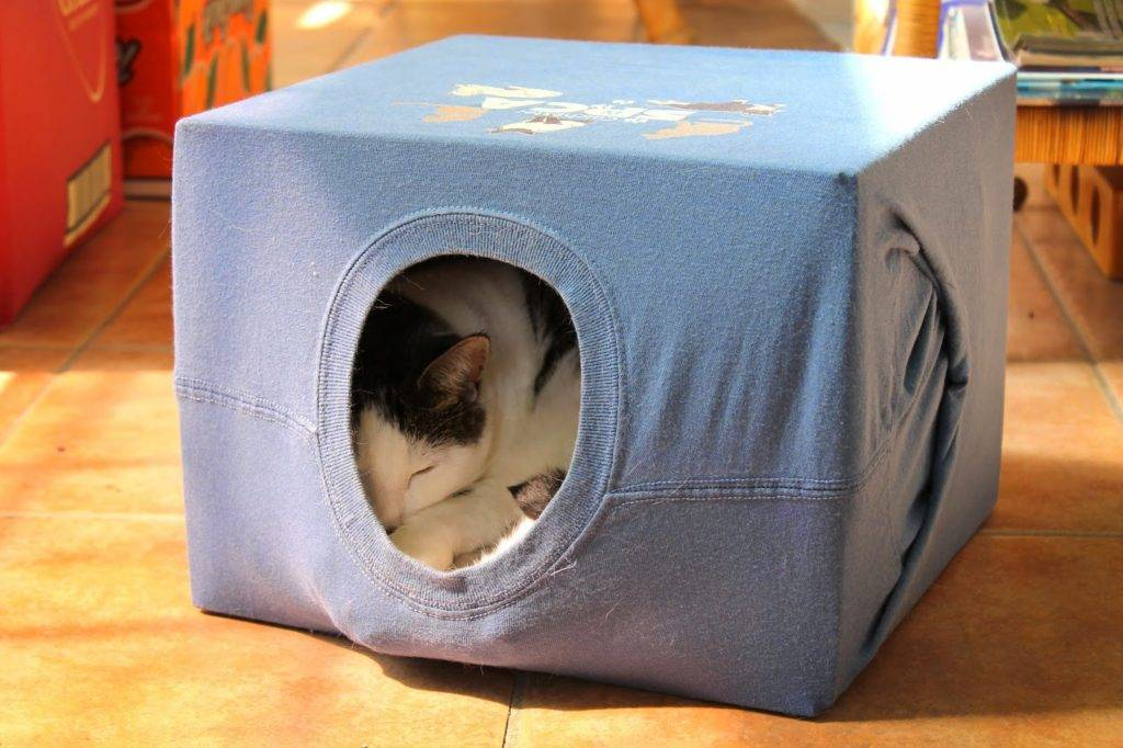 Как сделать домик из коробки для кошки своими руками