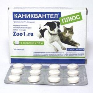 Противоглистные препараты широкого спектра действия для кошек